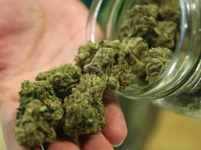 376170-marijuana
